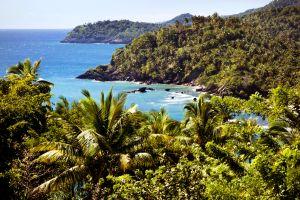 La faune et la flore, Observatoire baleine Samana République Dominicaine Caraïbes mer verdure océan rochers