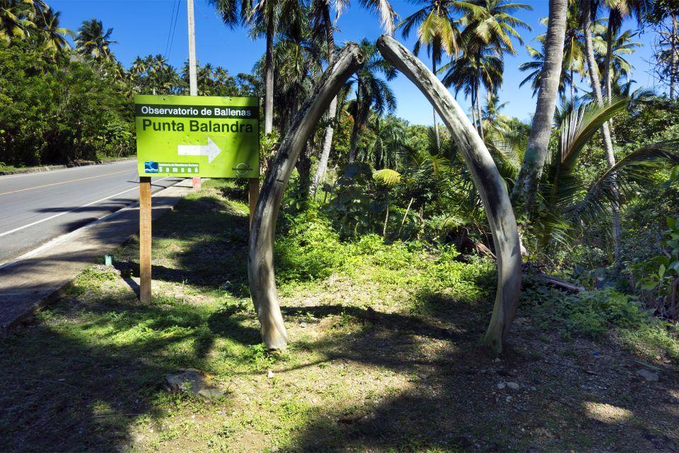 La faune et la flore, Observatoire baleine Samana République Dominicaine Caraïbes verdures