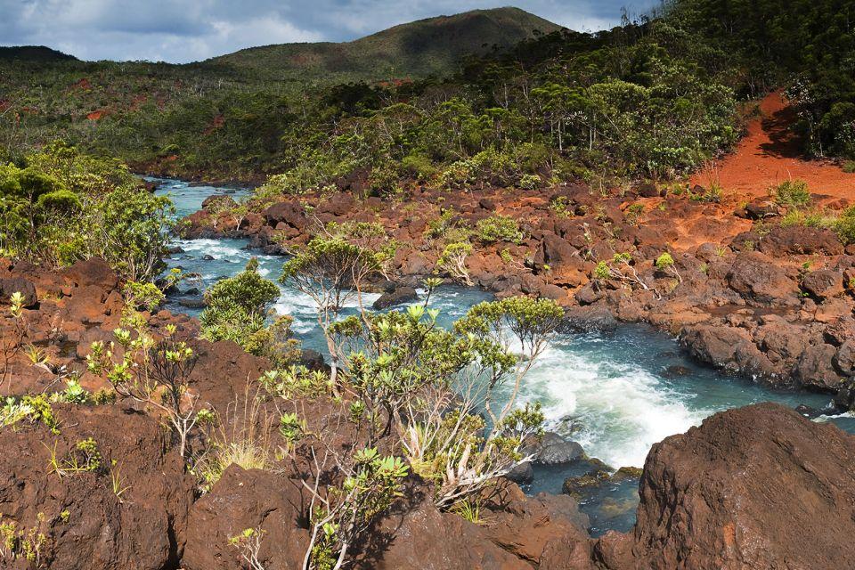 Océanie, Nouvelle-Calédonie, France, Parc de la Rivière Bleue, rivière, bleue, riviere