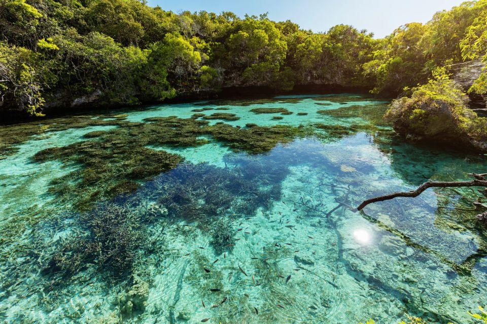 Océanie, Nouvelle-Calédonie, France, Parc de la Rivière Bleue, rivière, bleue, riviere,