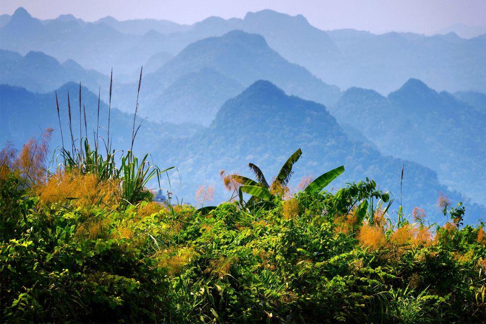 Asie, Vietnam, Parc national de Phong Nha, Ke Bang, faune, montagne, verdure,