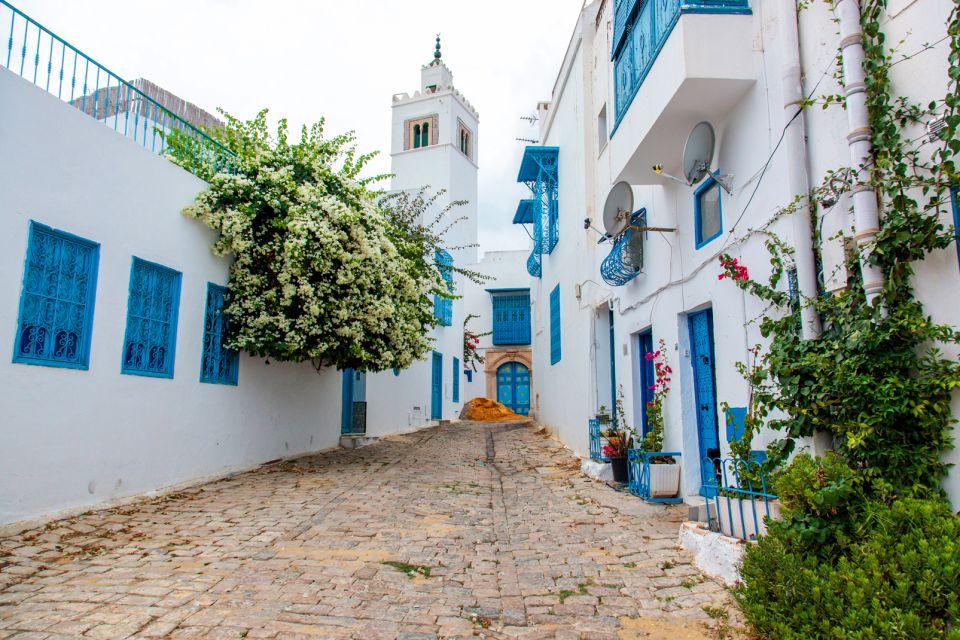 Les arts et la culture, Sidi Bou Saïd, tunisie, maghreb, Afrique, ville, arabe, rue