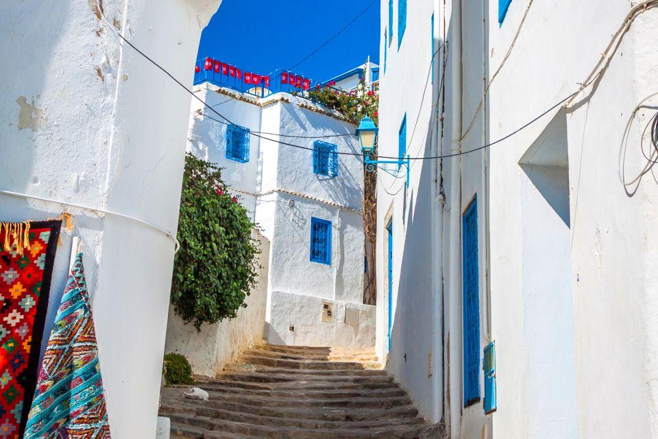 Les arts et la culture, Sidi Bou Saïd, tunisie, maghreb, Afrique, ville, arabe, habitation