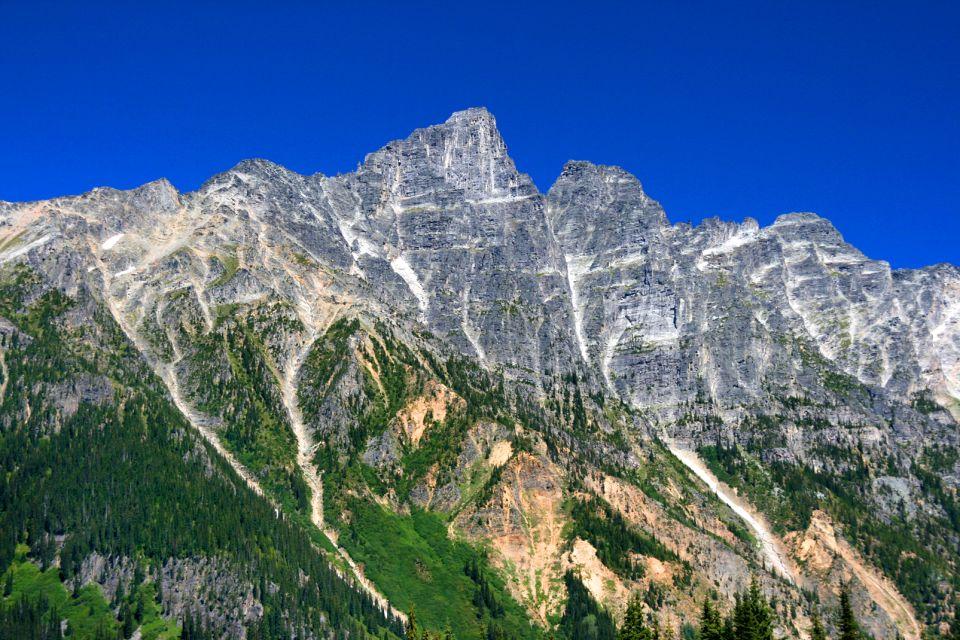Les paysages, Pine
