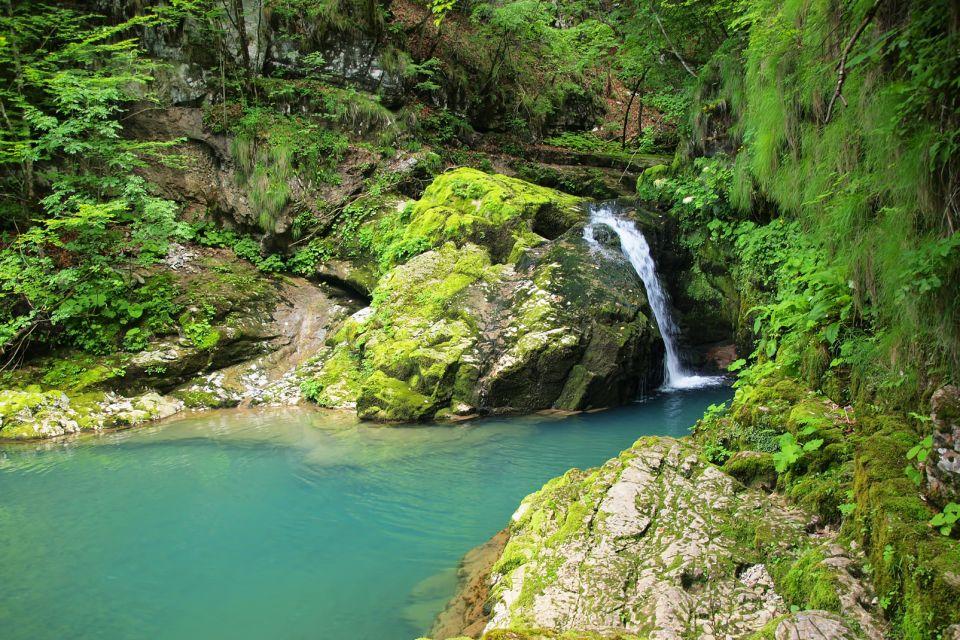 Les paysages, Gorski Kotar, Risnjak, Risnjak national Park, parc national, Croatie, Europe, flore