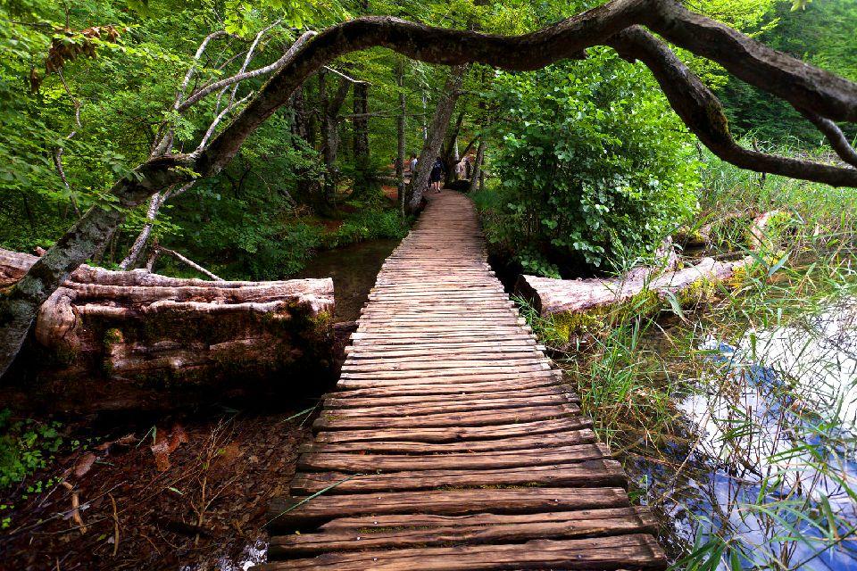 Le parc national de Plitvice , Les promenades qui parcourent le parc , Croatie