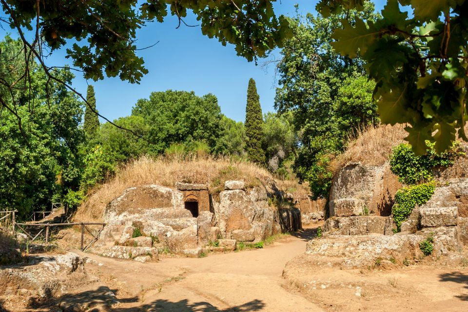 Les sites archéologiques, europe, italy, cerveteri, traveling, nature, trees, tombs, history