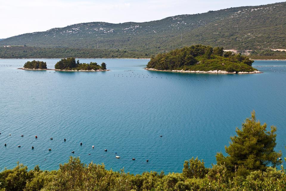 Le isole , Una baia verde della Croazia , Croazia
