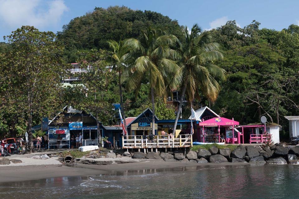 La faune et la flore, réserve, cousteau, guadeloupe, antilles, caraïbes, faune, poisson, animal, mer, place