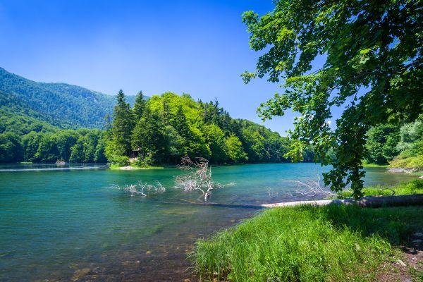 Le lac Biograd, Biogradska Gora National Park, Les paysages, Monténégro
