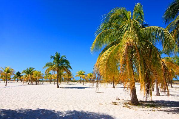 La playa salvaje de los cayos, Las playas de los Cayos, Las costas, Cuba