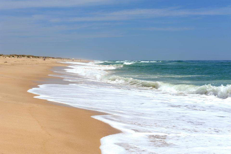 Les côtes, ile, culatra, atlantique, algarve, portugal, plage