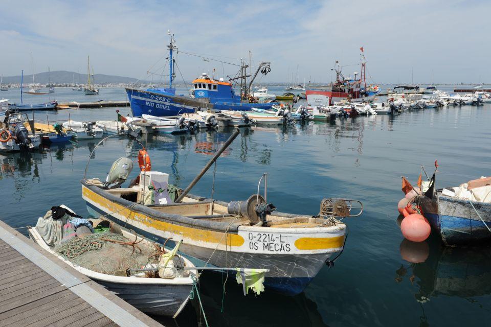 Les côtes, ile, culatra, atlantique, algarve, portugal, village, port, pêche