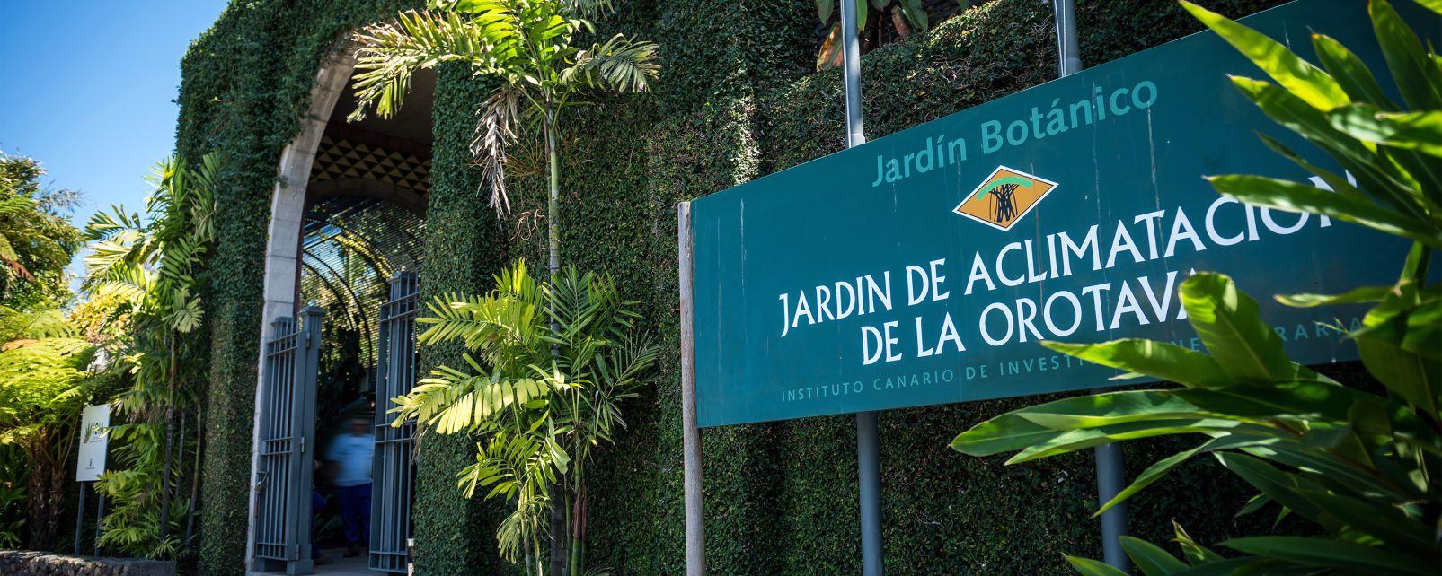 La faune et la flore, canaries, espagne, ténérife, île, europe, flore, jardin, orotava, acclimatation