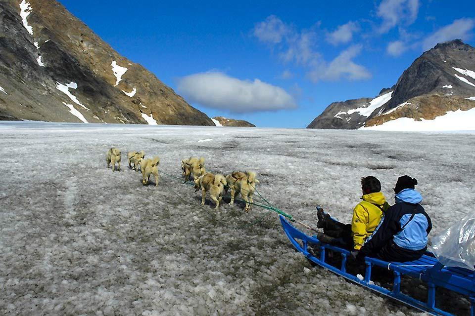 Los parques zoológicos , Esquimales de Groenlandia tirados por perros , Dinamarca