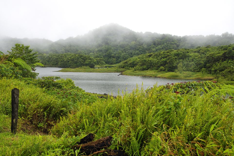 Rivers, The rivers, Landscapes, Dominica
