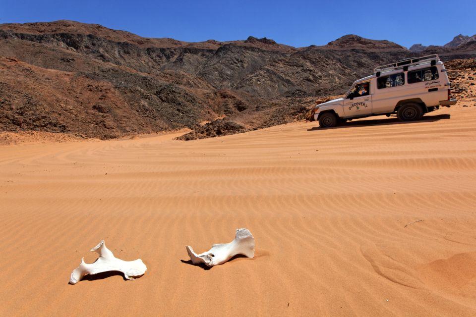 Les paysages, Sinai, Egypte, afrique, désert, sinaï