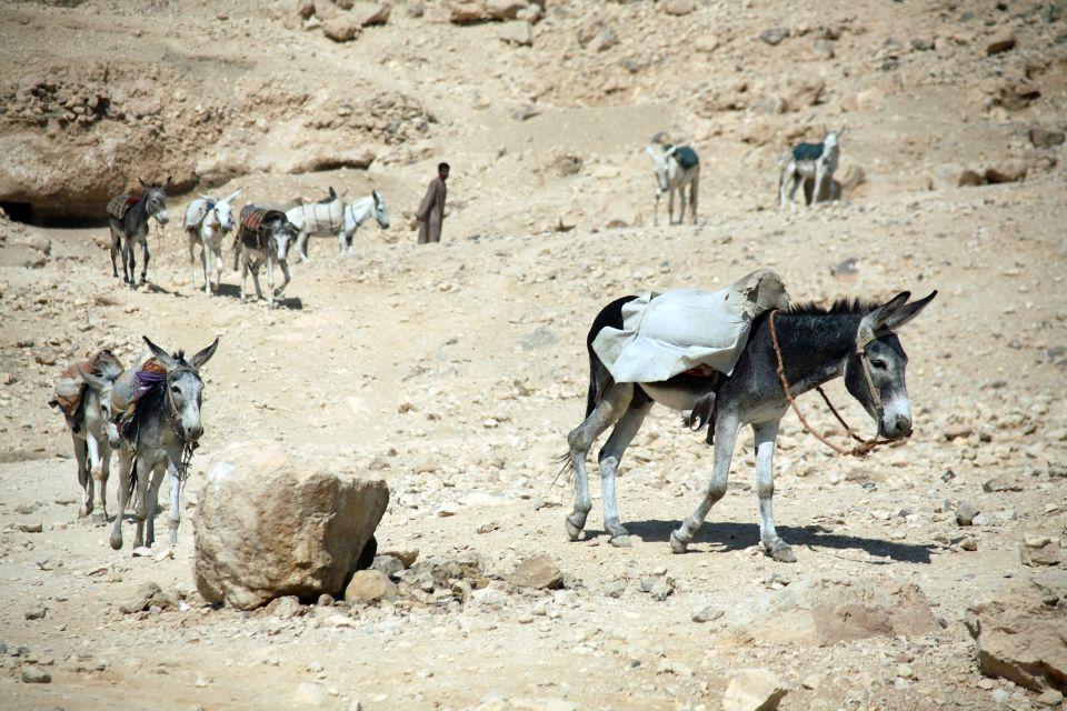 Desierto de Sinaí, El desierto arábigo, Los paisajes, Egipto