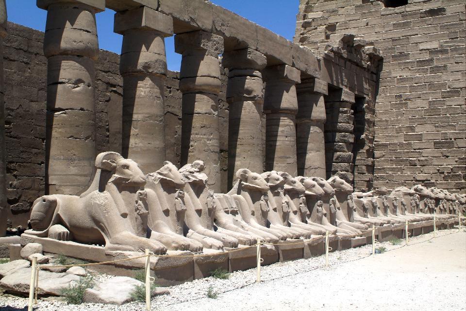Luxor , La fila delle sfingi , Egitto