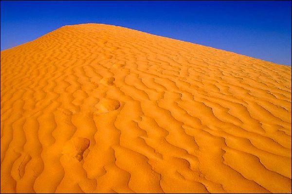 Die Wüste , Die Vereinigten Emirate