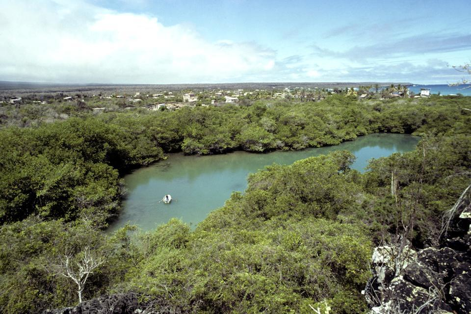 Isla Santa Cruz , Equateur et Galapagos
