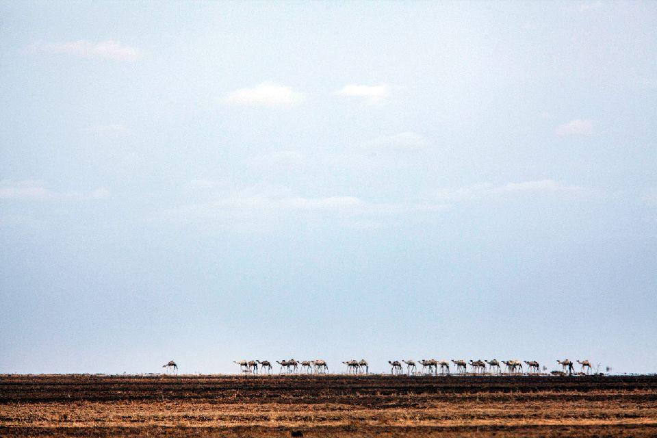 The Danakil Depression , The Danakil desert, Eritrea , Eritrea
