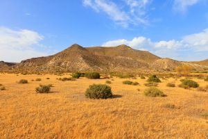 Le désert de Tabernas, Les paysages, Almeria, Andalousie