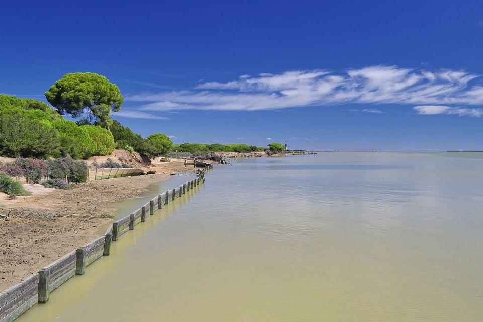 Le Parc national de Doñana , Les oiseaux , Espagne