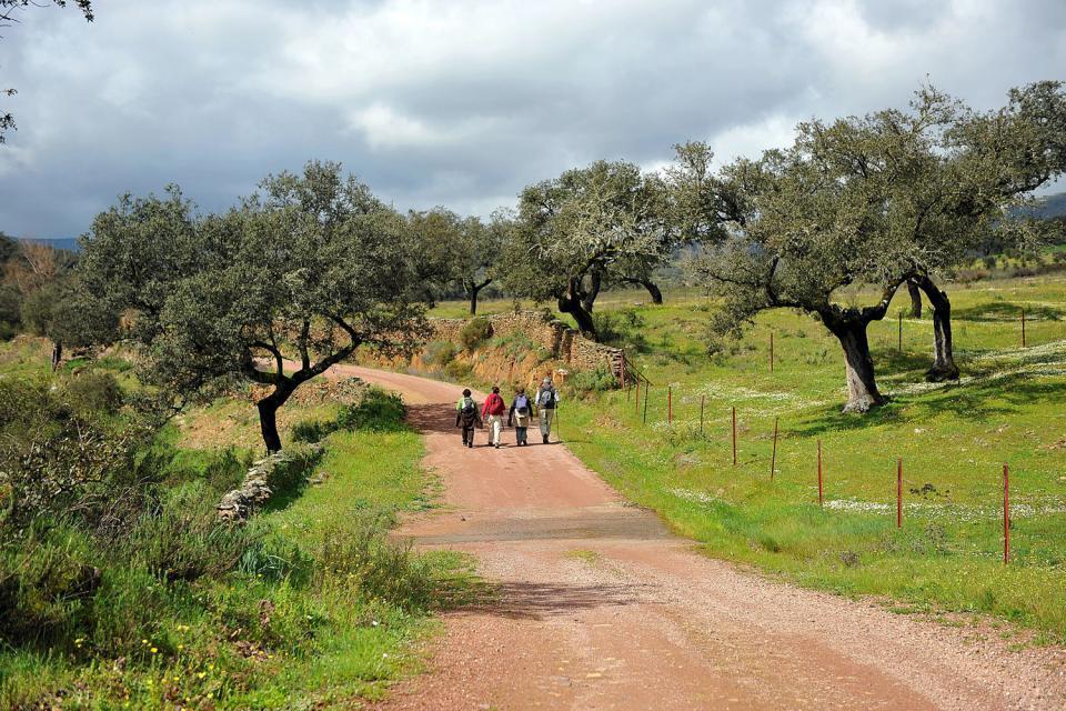 Parc naturel de la Sierra Aracena y Picos de Aroche, La faune et la flore, Le paradis des randonneurs, Huelva, Andalousie