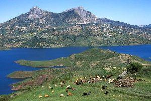 Parque Natural de Sierra de Grazalema , España