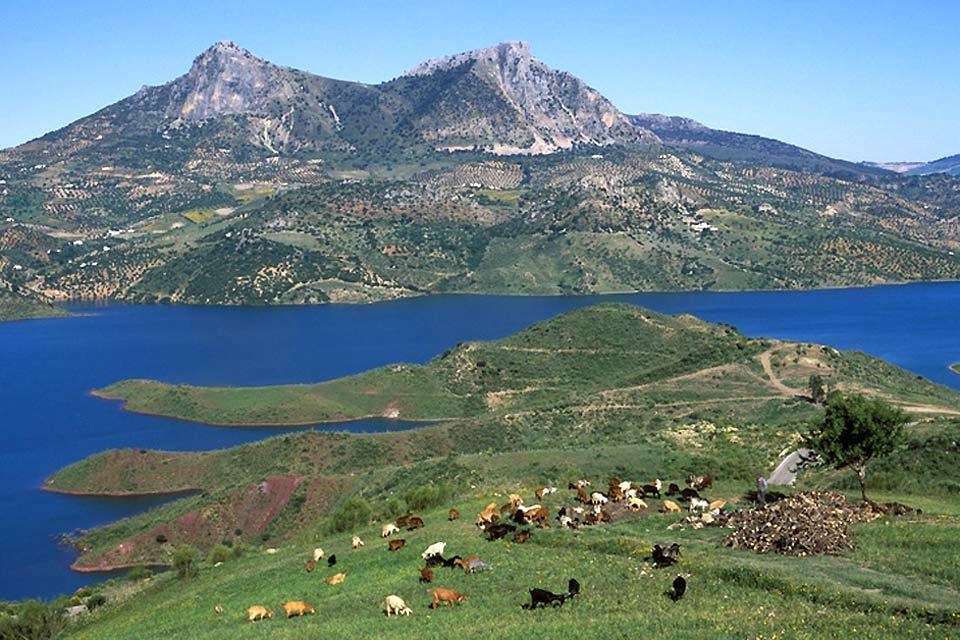 Sierra de Grazalema Natural Park , no title! , Spain