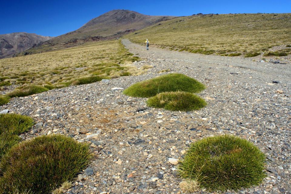 Parc National de la Sierra Nevada , Randonnée sur le mont Mulhacèn , Espagne