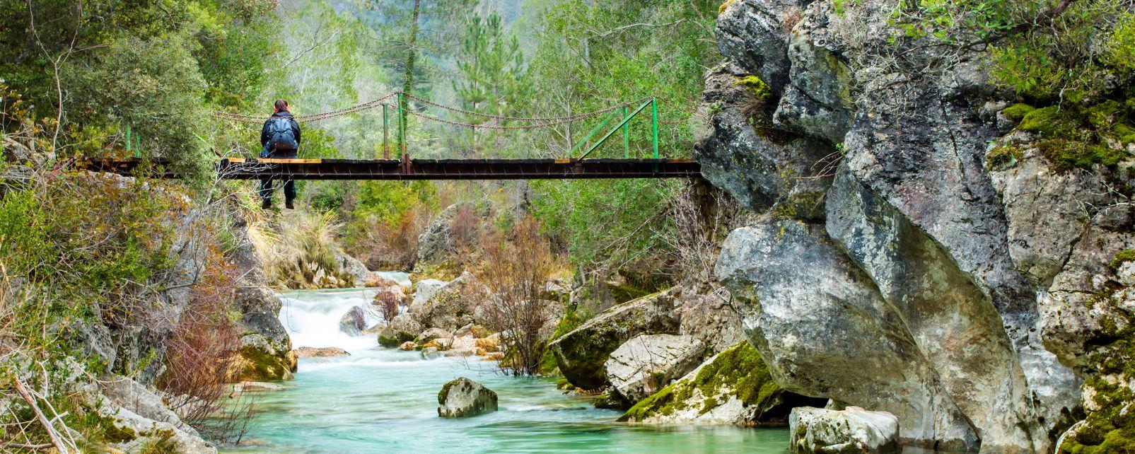 Parco naturale della Sierra de Cazorla, La fauna e la flora, Andalusia