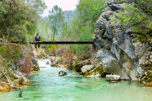 Der Naturpark Sierra de Cazorla, Naturpark der Sierra de Cazorla, Die Fauna und Flora, Andalusien