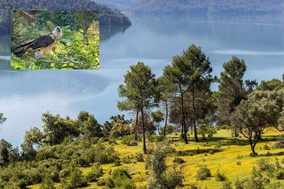 , Parque Natural de la Sierra de Cazorla, Fauna y flora, Andalucía