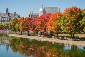 Vacances à Montréal : dès 363€ le vol A/R pour 1 semaine au Canada !