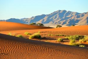 Vacances en Namibie : dès 452€ le vol A/R pour 10 jours en Afrique !