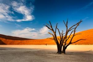 Vacances en Namibie : dès 448€ le vol A/R pour 10 jours en Afrique !