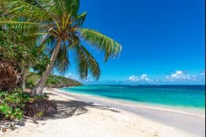 Vacances en Guadeloupe : dès 283€ le vol A/R pour 1 semaine à Pointe-à-Pitre !