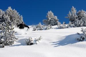 Séjour dans les 2 Alpes : dès 382€ la semaine de Noël dans des hébergements au cœur de la station !