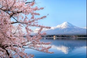 Vacances au Japon : dès 432€ le vol A/R pour 10 jours à Tokyo !