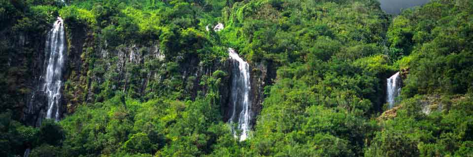 surinam-paysage
