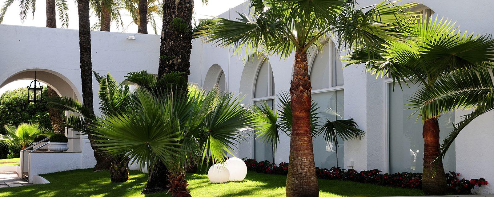 Hotel Melia Marbella Dinamar