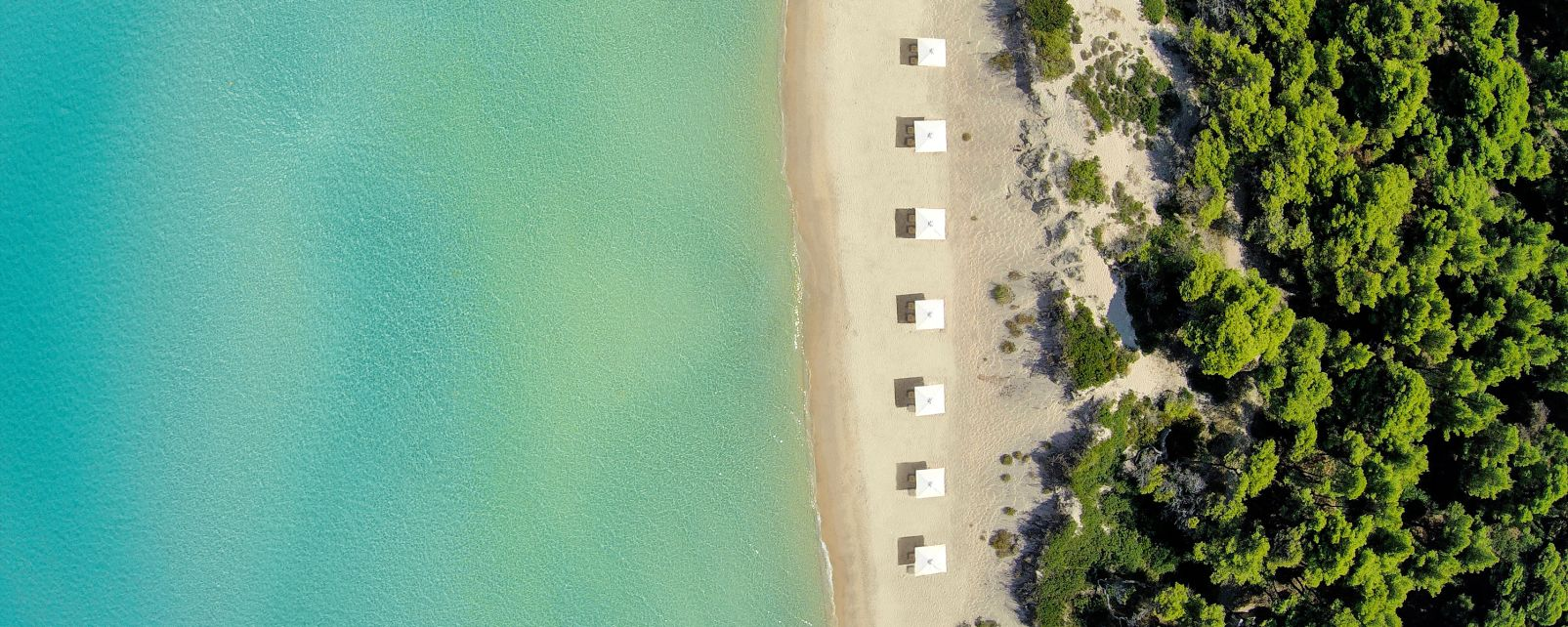 Hôtel Sani Beach