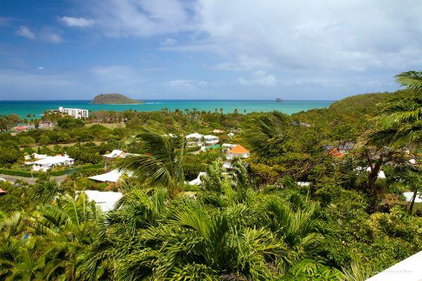 site de rencontre dans l'île des Caraïbes permet de brancher des poèmes