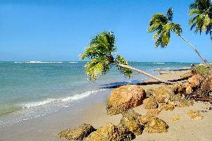 Bahia Las Ballenas