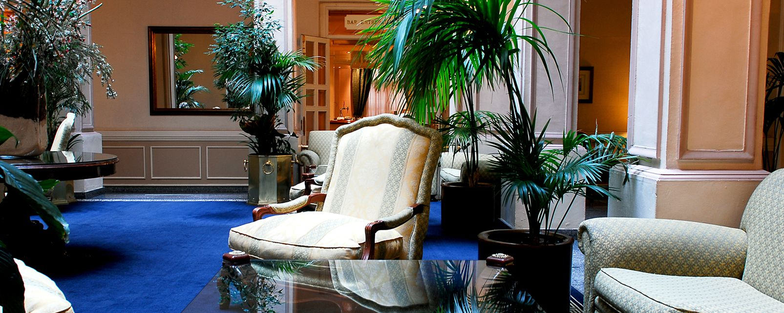 hotel tryp ambassador: