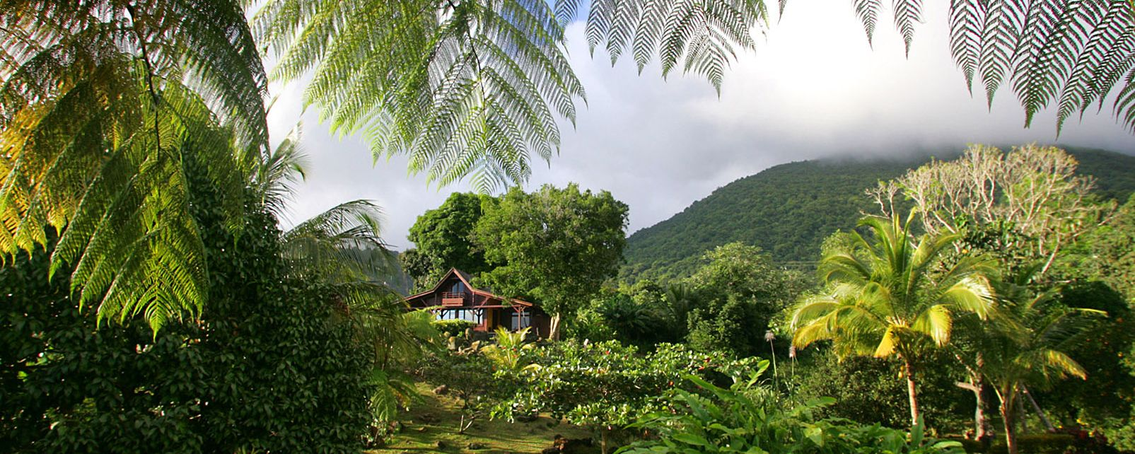 Hotel Le Jardin Malanga