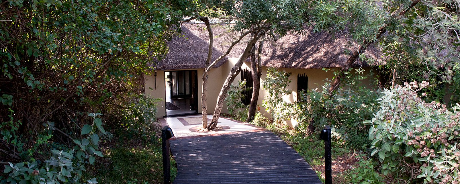 Hotel  Lion Sands Ivory Lodge