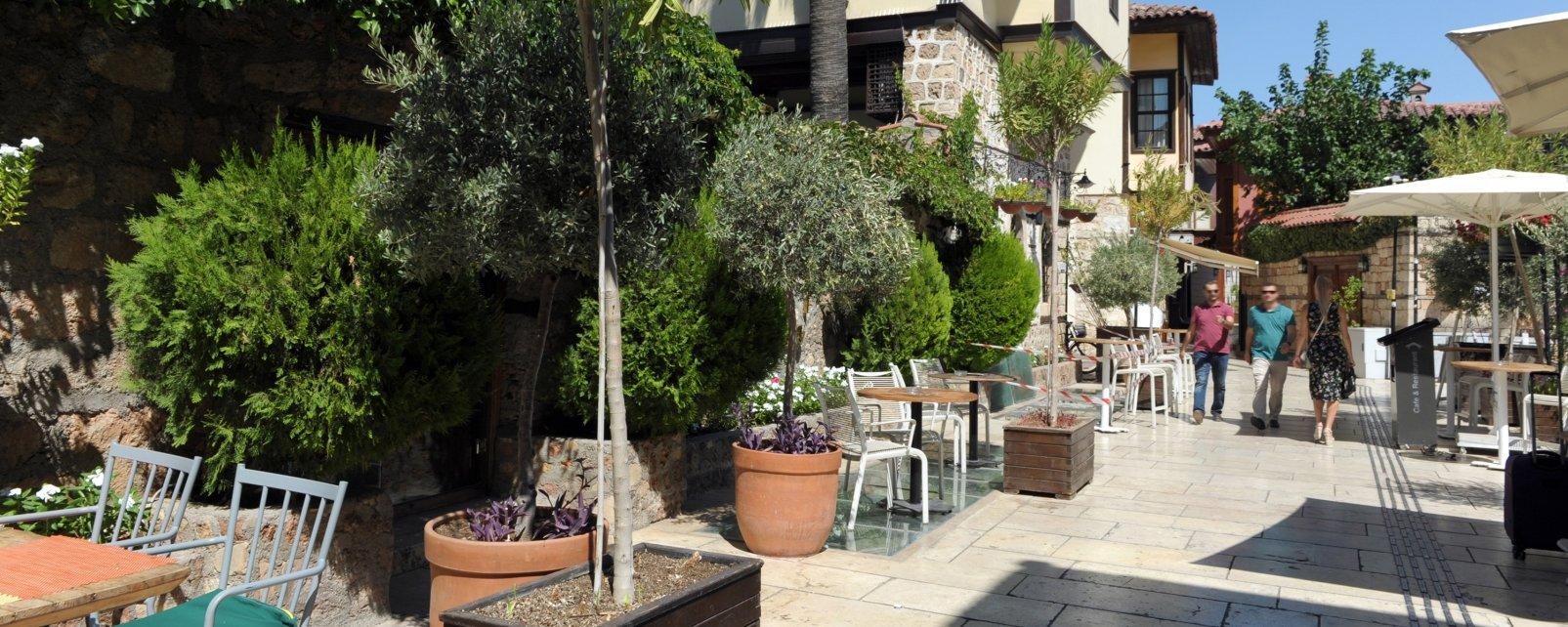 Hotel Alp Pasa